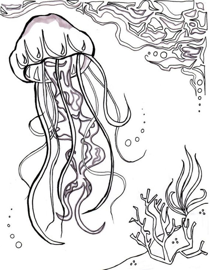 Jellyfish Coloring Pages Free Coloring Sheets Animal Coloring Pages Ocean Coloring Pages Fish Coloring Page