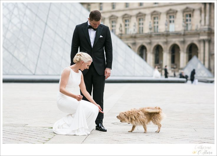 "This little dog has photobombed several of my brides over the last couple of years and usually with her little orange ball stuffed into her mouth as a ""gift"" for the bride :D  www.catherineohara.com  English speaking wedding, elopement, engagement and surprise proposal photographer based in Paris, France"