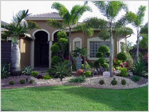 Pin By Elba Torres On Palmas Pinterest Florida Landscaping Front Yard And Landscape