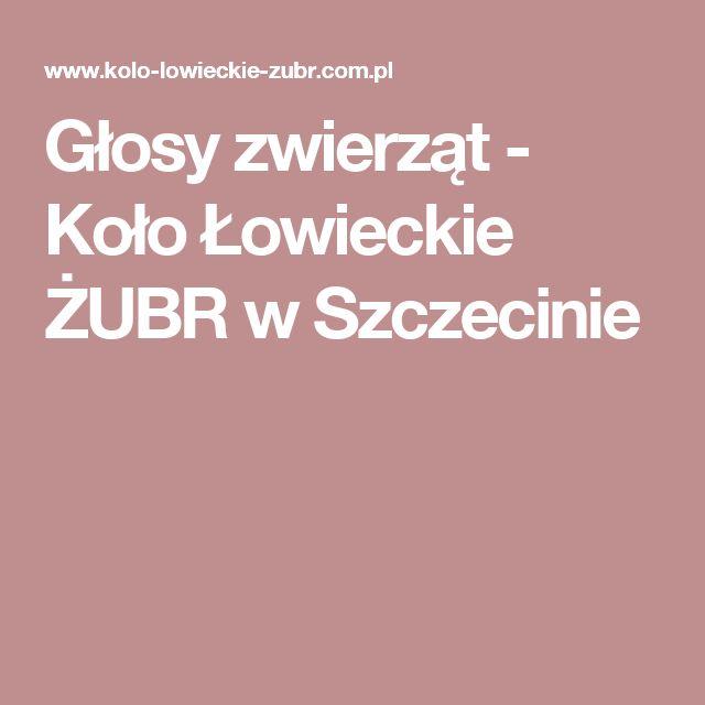 Głosy zwierząt - Koło Łowieckie ŻUBR w Szczecinie