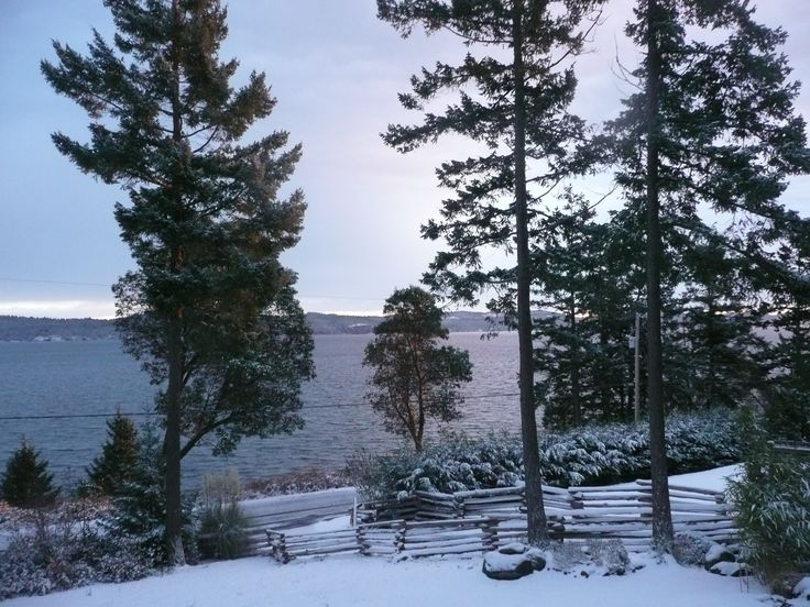 Our one wintry day on Salt Spring!