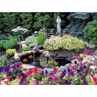 437 best images about small garden ponds on pinterest for Koi pond james