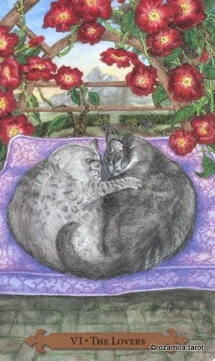 The Lovers - Tarot of the Mystic Cats