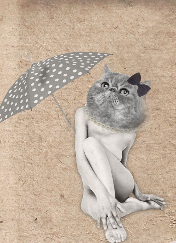 Cat, Illustration by EM Miljeteig
