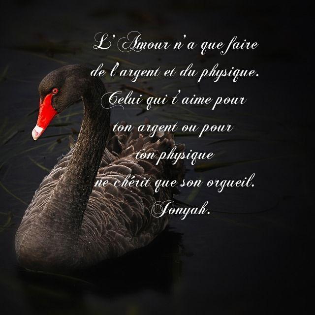 Citation Amour Orgueil Orgueil Amour Et Citation