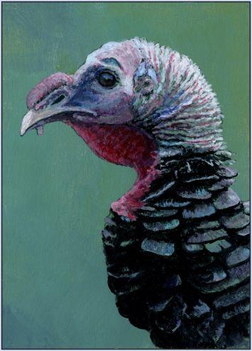82 Best Turkeys Images On Pinterest Coloring Books