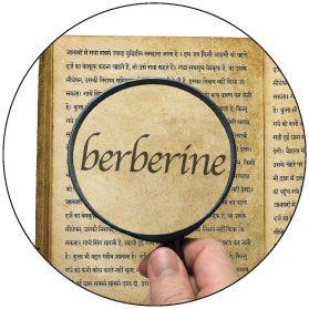 Berberine is Superior to Metformin | Life Enhancement Products