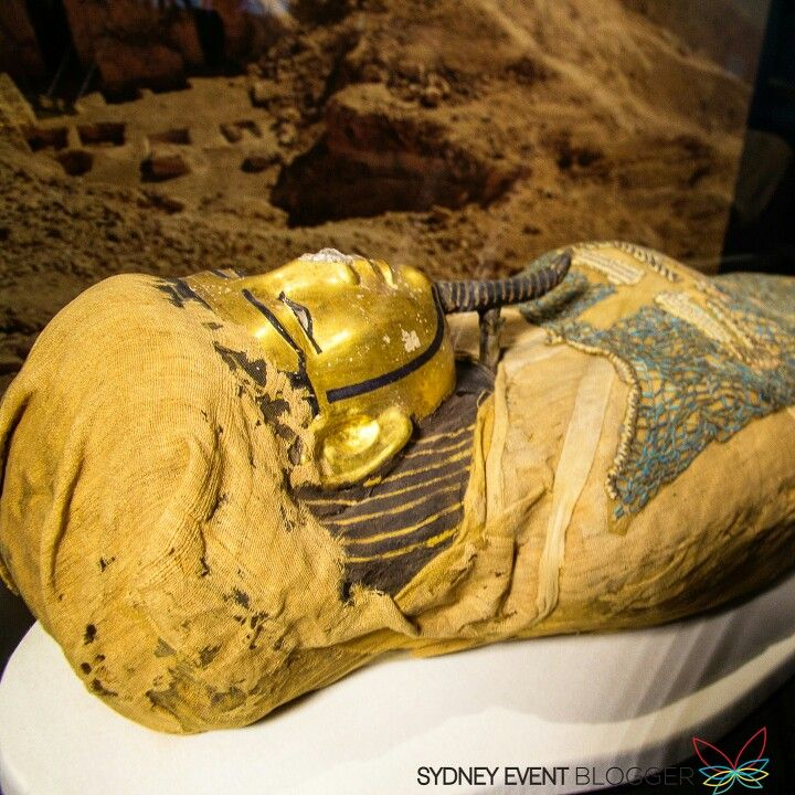 The exhibition of the Egyptian Mummies from the British Museum starts Saturday 10 December 2016 at the Powerhouse Museum.