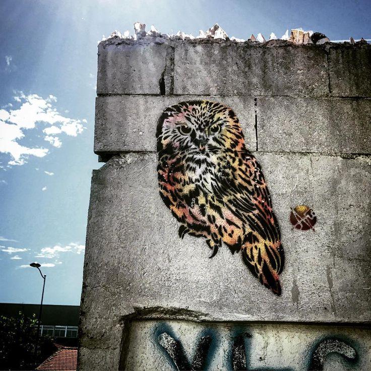 Street owl ! 🦉 #streetart #art  #france #graffiti #graff #instagraffiti #instagraff #urbanart #wallart #artist #urbanart #pantin  #pantinart #pantin93 #owl #chouette