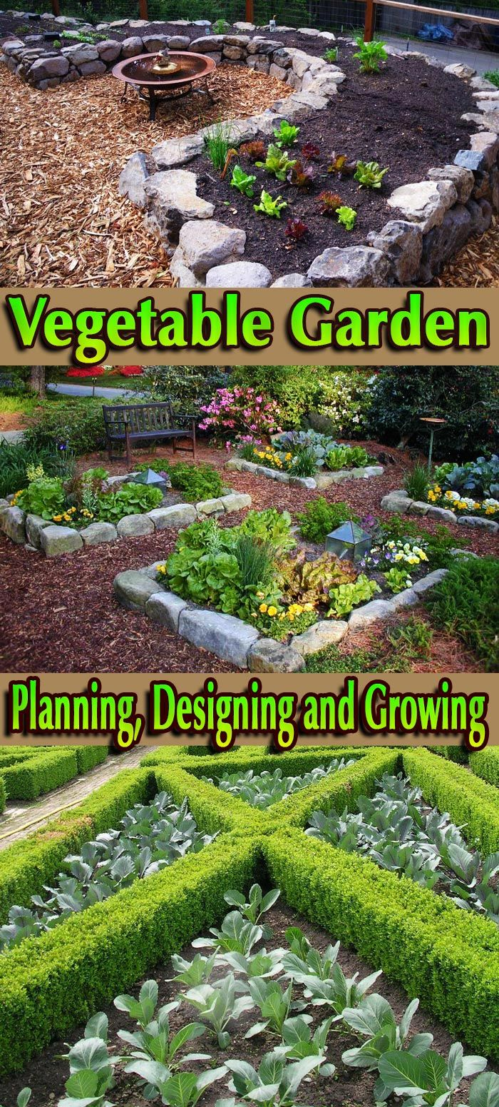 Let's talk about vegetables - how to grow them and how to design your vegetable garden... #Vegetable #Garden #Planning #Designing #Growing #gardening
