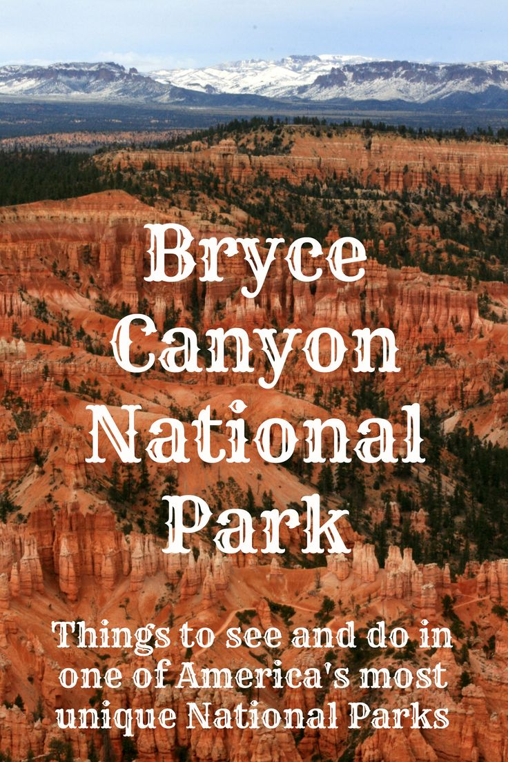 Bryce Canyon National Park. Actual blow by blow where-we-went and what-we-saw by a man and a woman. Priceless info for me, who has no clue what to expect or where to go etc!! READ IT!