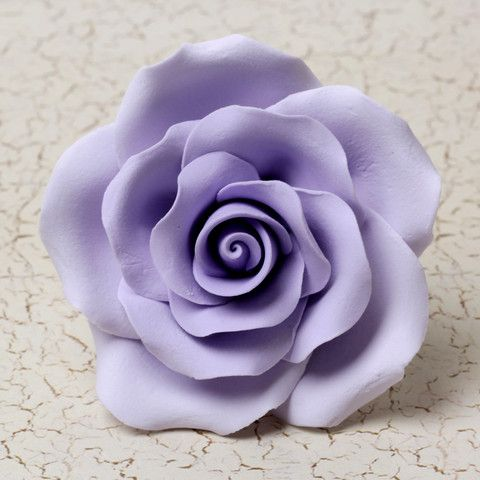 Garden Roses - Lavender   CaljavaOnline