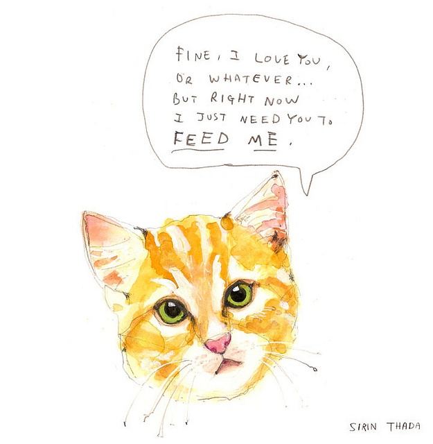 bahaKitty Cat, Illustration, Art Prints, Feeding, Crazy Cat, Sirin Thada, Arty Inspiration, Animal, Cat Lady