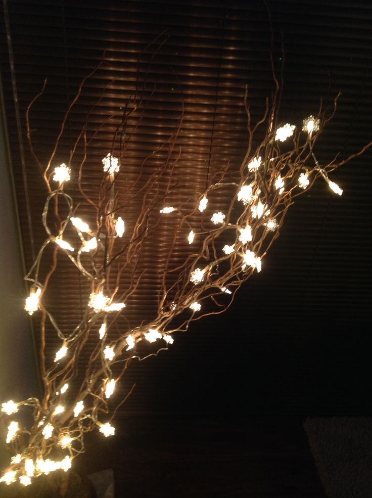 My partner's home made xmas tree from twisted willow, with a light spray of copper art paint, and 2 sets of £3 LED Homebase warm gold snowflake lights. The reflection of the lights against our bronze Venetian blinds looked amazing.