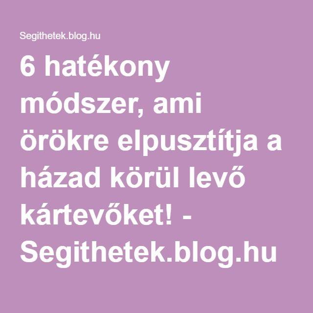 6 hatékony módszer, ami örökre elpusztítja a házad körül levő kártevőket! - Segithetek.blog.hu
