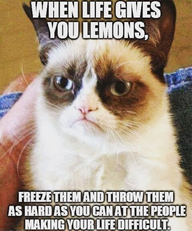 I hope you got no one today you'd want to throw lemons at. Have a great day!