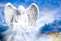 Angel cards are biased towards the energies of angelic entities that wish to care for love and protect humanity. With infinite compassion for the humans those entities also give guidance and insight.