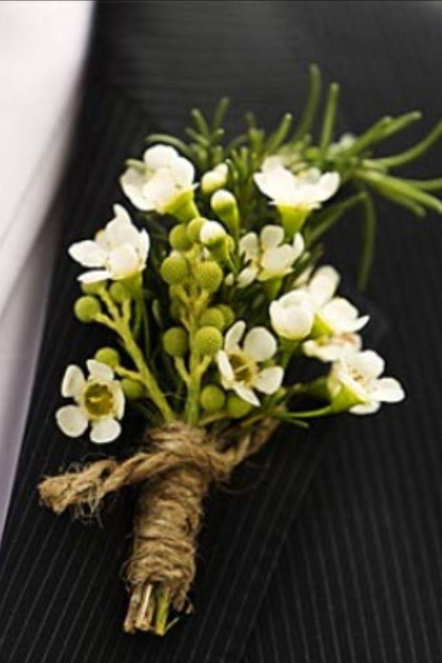White Wax Flower Boutonni 232 Re Wedding Flowers White Wax