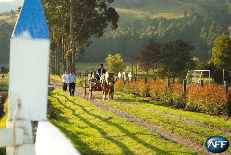 Espacios naturales, ideales para que hagas tu sueño realidad #BodasAFF