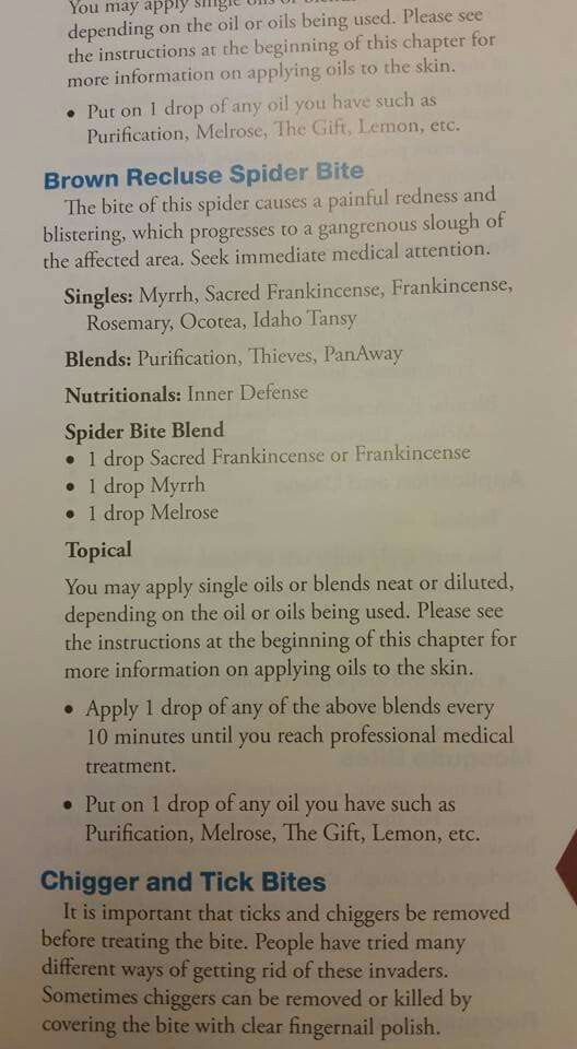 Brown Recluse Spider Bite And Oils Essential Oils And