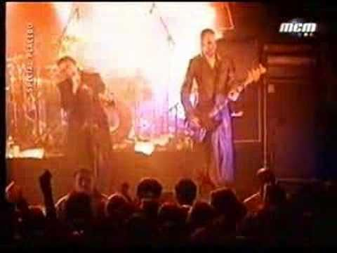 Placebo y David Bowie (Without you I'm nothing) - YouTube