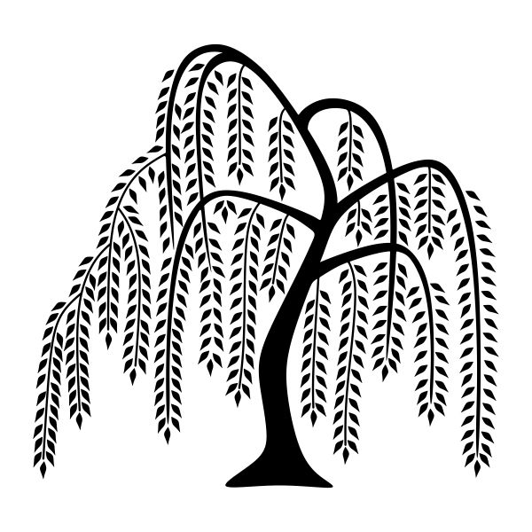 Image Result For Tree Svg Willow Tree Tattoos Tree Svg