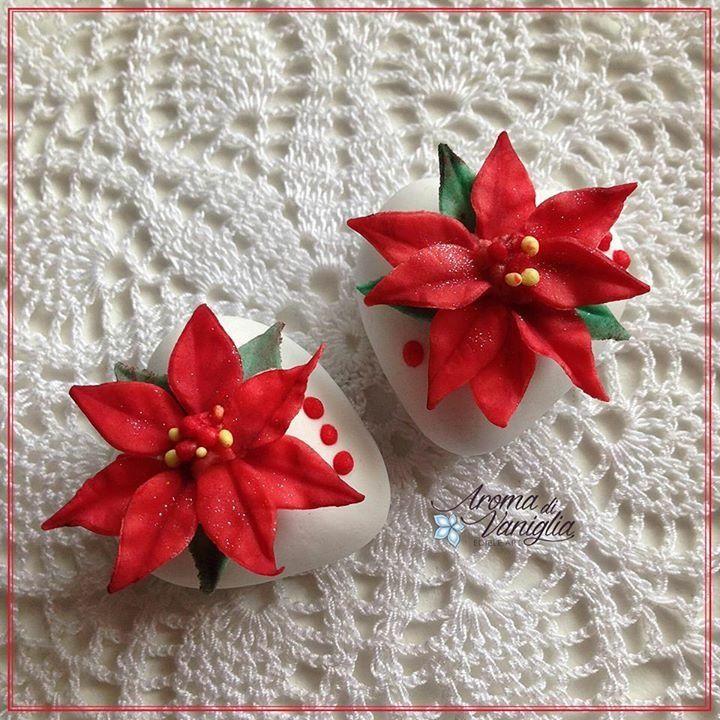 Una piccola stella di Natale!...