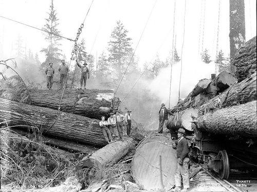 1810 Best Logging Railroads Images On Pinterest