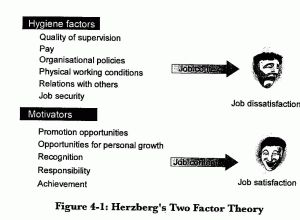 Best 25+ Two factor theory ideas on Pinterest | Learning theory ...