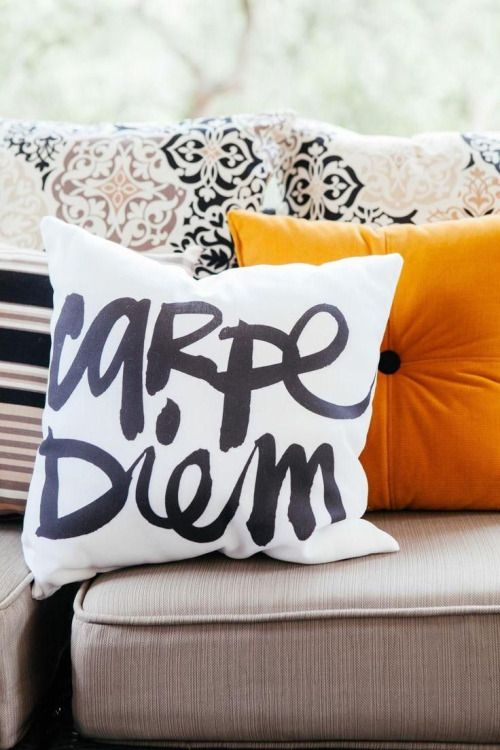 Carpe Diem Indoor/Outdoor Throw Pillow ...a great reminder to seize and ENJOY the day!