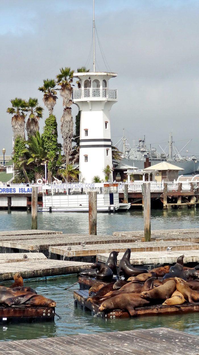 2. Forbes Island: Pier 41, San Francisco  10 Most Beautiful SFO restaurants