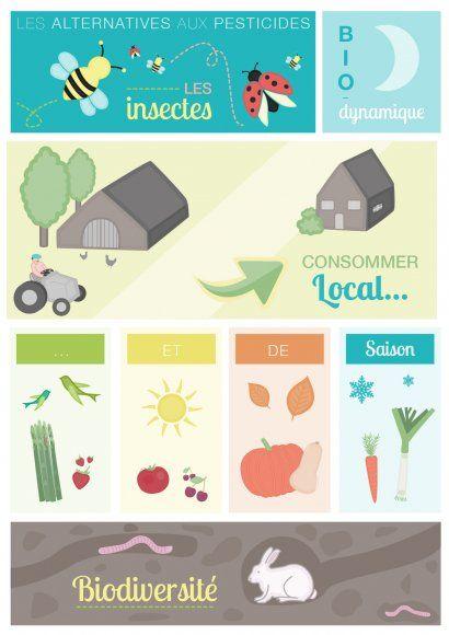 Contest - non aux pesticides Go vote for me:)