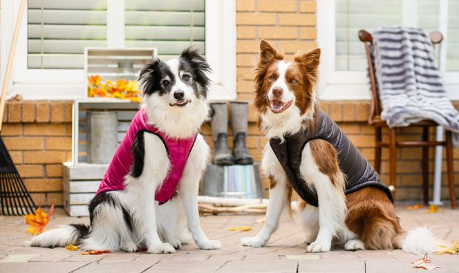 Bailey & Bella Cocoon Vest