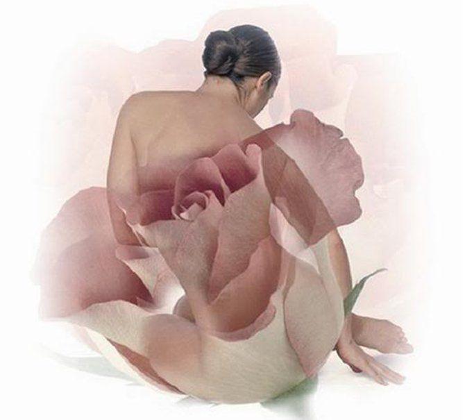 fiore di carta da parati femminile