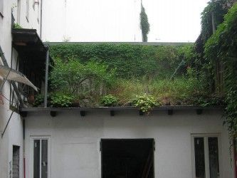 Green roofs and noise amelioration