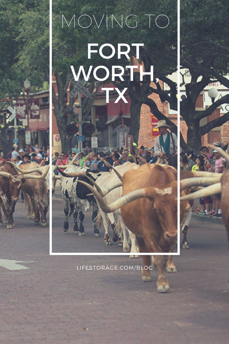 35 best Fort Worth Life images on Pinterest