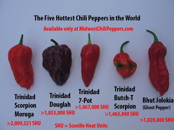 Hottest Pepper In The World List 77 best images about E...