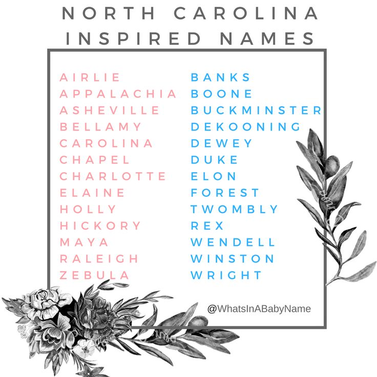 Baby Girl and Baby Boy Names Inspired by North Carolina || Baby Names || What's In A Baby Name || For more, check out my instagram: @WhatsInABabyName #WhatsInABabyName || Airlie Appalachia Asheville Bellamy Carolina Chapel Charlotte Elaine Holly Hickory Maya Raleigh Zebulon || Banks Boone Buckminster de Kooning Dewey Duke Elon Forest Twombly Rex Wendell Winston Wright || Southern Charm || Charlotte, North Carolina || Raleigh, NC || Chapel Hill ||