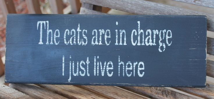 Wood Sign, The Cats Are in Charge, Entry, Pet Sign, Kitchen Wall Art, Rustic, Wall Sign, Funny Quote, Home Quote, Hand Painted, Home Decor by PreciousMiracles on Etsy https://www.etsy.com/listing/122242041/wood-sign-the-cats-are-in-charge-entry