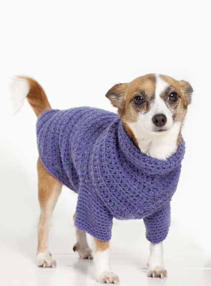 Dog Sweater Knitting Pattern For Beginners : 1000+ images about Poppy Puppy on Pinterest Coats, Knitting patterns and Ho...