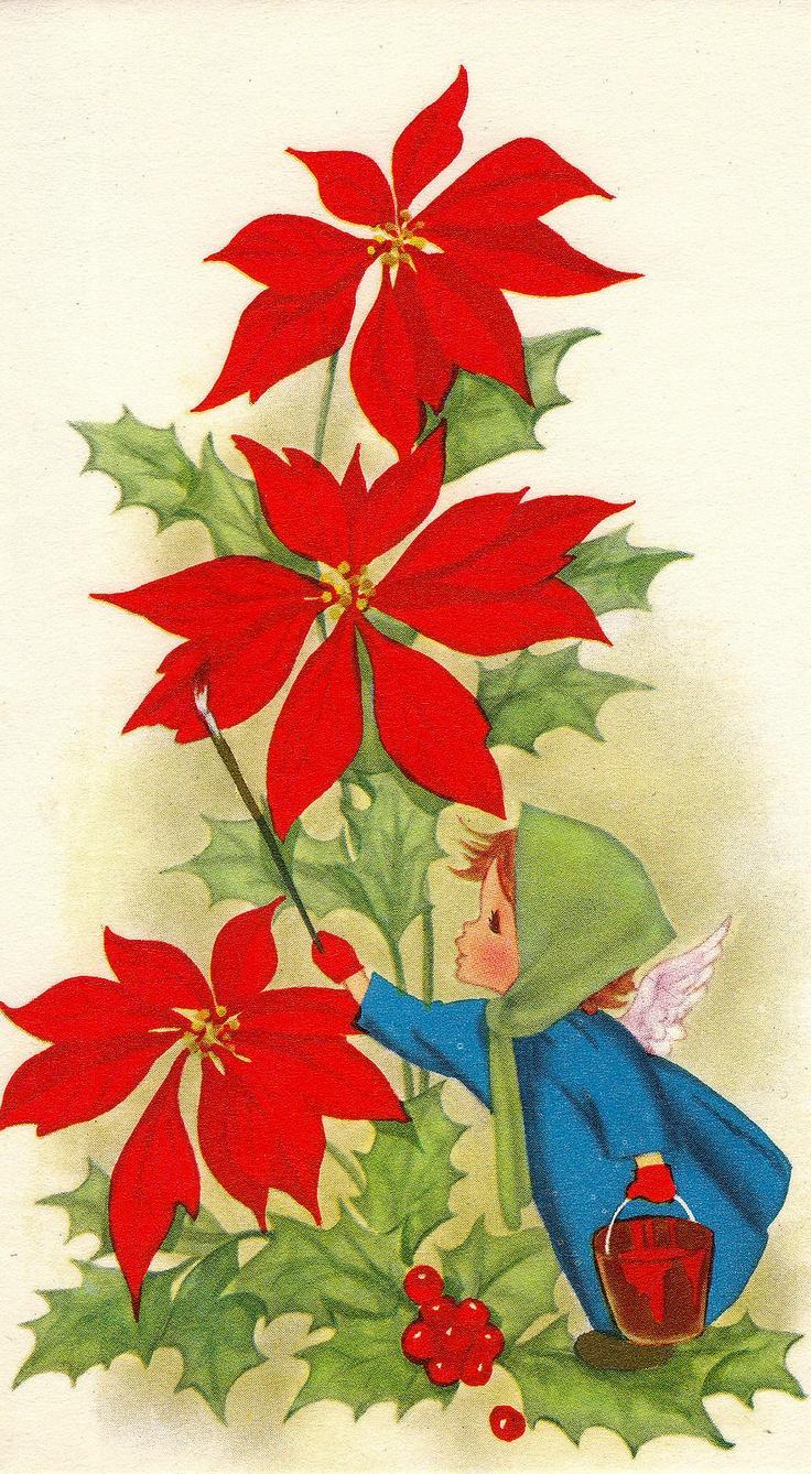 261 best cards with a poinsettia images on pinterest christmas
