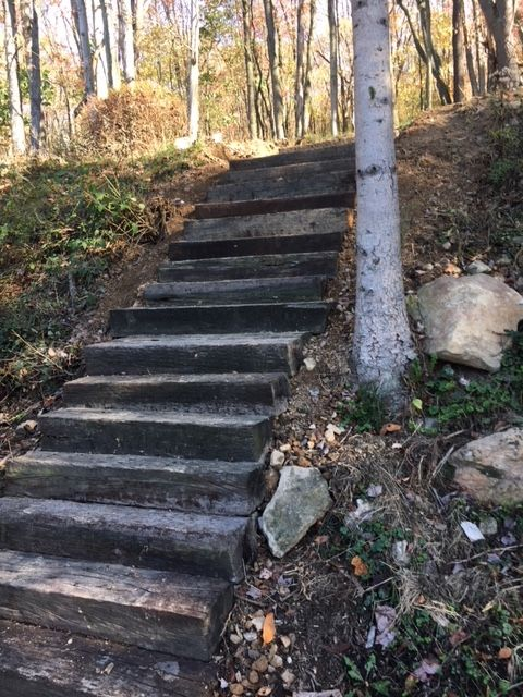 Steps Up Our Slope Made Of Railroad Ties And Rebar
