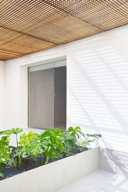 Outdoor garden. #minimalism | via indoorsoutdoors.tumblr.com