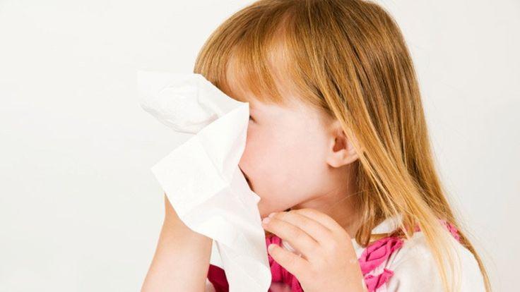 Il était une fois, dans un pays fort, fort glacial, une petite fille qui bouillait de fièvre depuis cinq jours et qui toussait tellement que ses poumons sont sortis. (Ils ont dit: «Il fait trop froid ici!» Et sont retournés à leur place, à la chaleur.) Cette enfant, nommée Pouliche, habituellement remplie d'énergie et d'idées …