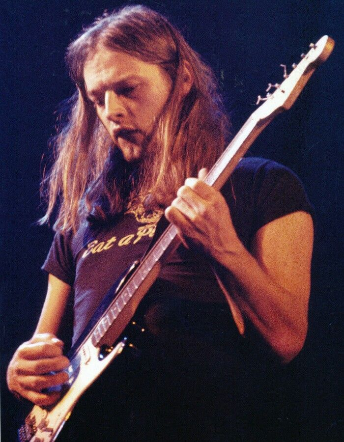 David Gilmour  , Pink Floyd