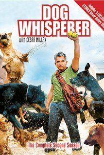 Dog Whisperer with Cesar Millan: Season 4, Episode 4 - I love the story of Luna, a very fearful dog that Cesar treats with the help of acupuncture.          Luna and K-9 Sniffers      (5 Oct. 2007)