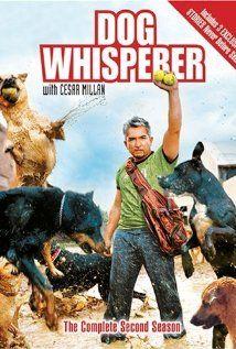 More at IMDbPro»  Dog Whisperer with Cesar Millan (2004–)