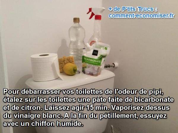 éliminez odeur de pipi dans les toilettes