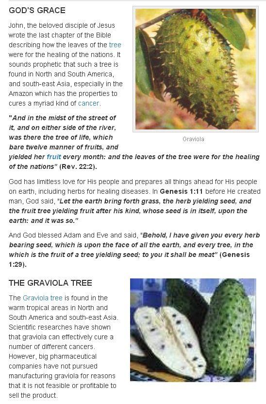 God's Food, Graviola Cures Cancer