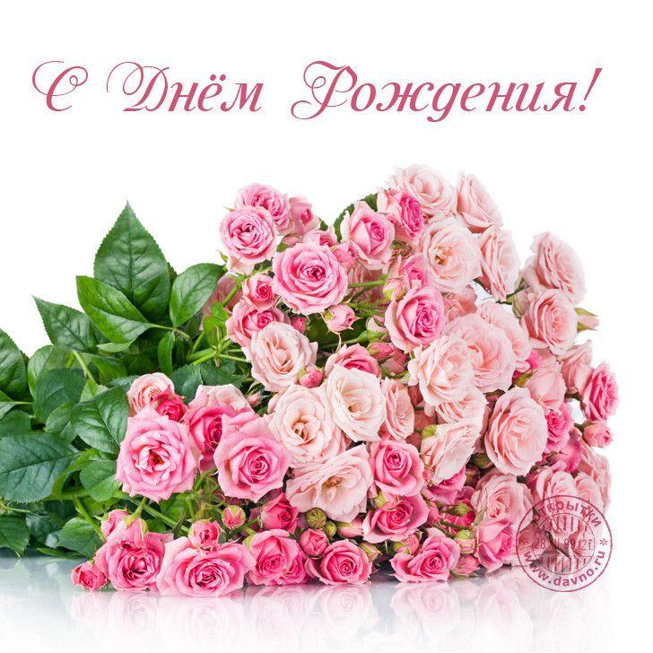 Картинка с красивыми розами с днем рождения, дисней